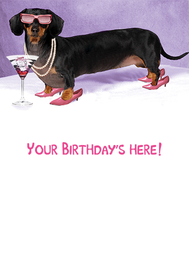Funny Birthday Ecard Quot Hot Dog Quot From Cardfool Com